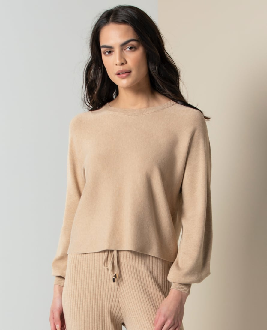 Ever New Women's Sweaters